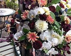 大型装花3000円白を基調とした胡蝶蘭などの装花